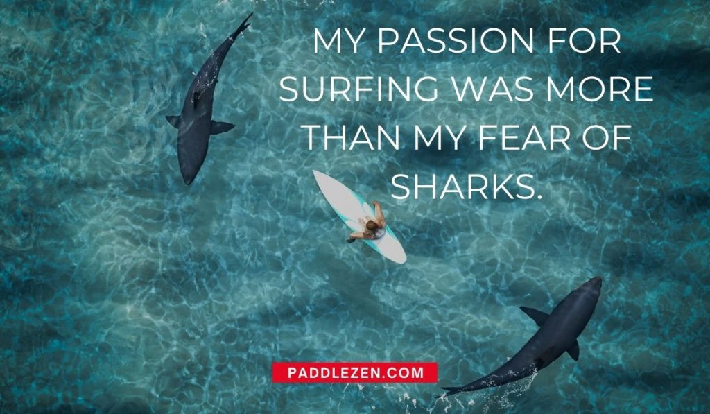 My passion for surfing was more than my fear of sharks - Quotes