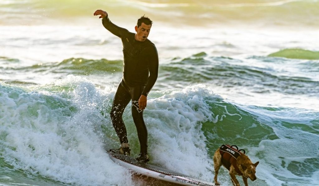 a surfer with his surfer dog