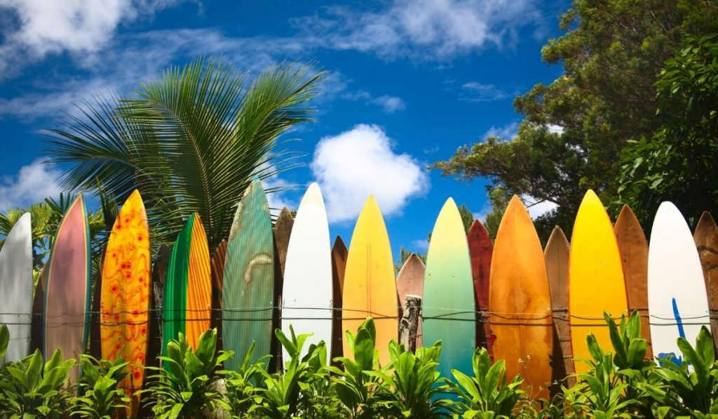 different colors of surfboard