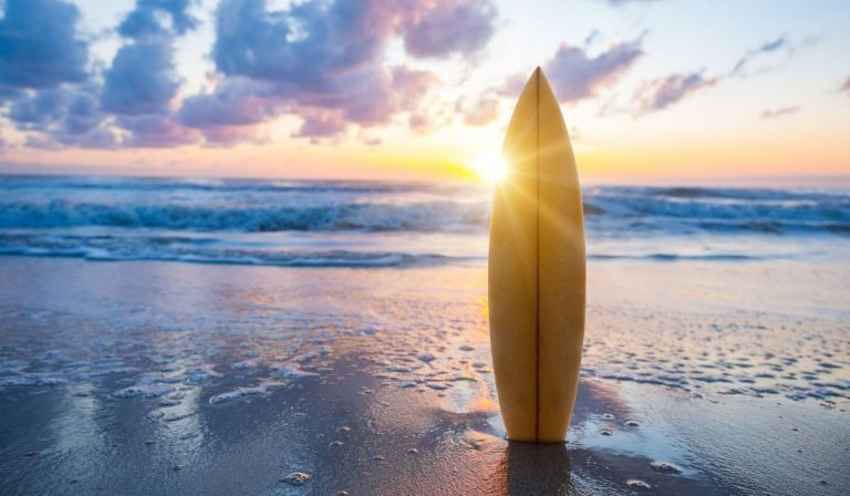 175+ Names for Surfboards
