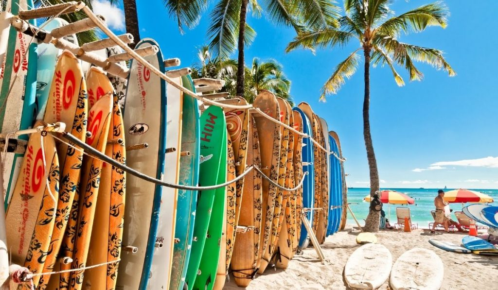 surfboards by the shore for rent