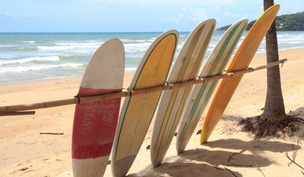 surfboards lined up on the shore