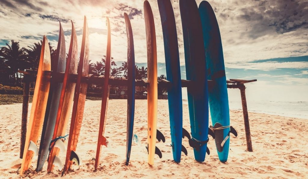 surfboards on the surfboard stand