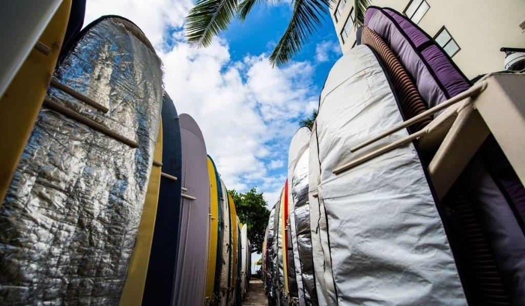 surfboards with board bags
